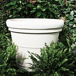 Neoclassic Indoor-Outdoor Rolled Rim Planter