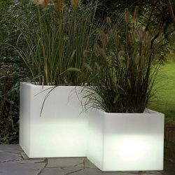 Cubotti Indoor-Outdoor Lighted Planter