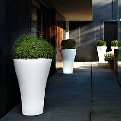 Ming Indoor-Outdoor Planter by Designer Rodolfo Dordoni