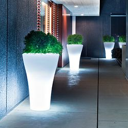 Ming Lighted Indoor-Outdoor Planter by Designer Rodolfo Dordoni