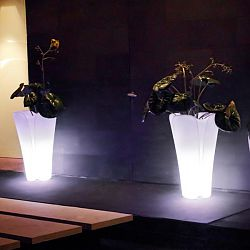 Pezzettina Illuminated Planter