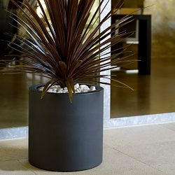 Cylindrical Indoor-Outdoor Planter