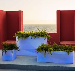 Illuminated Faz Box Planters